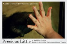 """Precious Little"" by Madeleine George, produced by Gadfly Theatre. Photo from gadflytheatre.org"